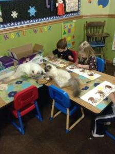 When we do preschool, they are right  with us. Many days they end up with paint on their paws.