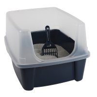 Litter Boxes for High Spraying Cats: Stop the Smelly Mess!