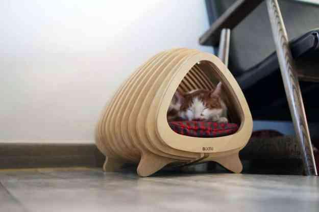 Fish Shaped Cat Bed by Korean designer Sang Nam-Park 4