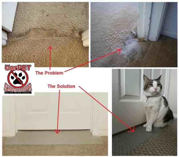 CarPET Scratch Stopper Stop Cats from Scratching Carpet Around Doorways