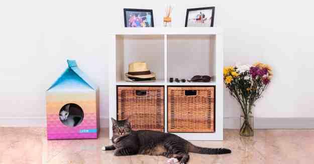 Petbo Pet House