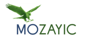 Mozayic  Cat Video Contest