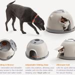 BONUS Giveaway! Feed-Safe™ Safe Feeding Station for Cats