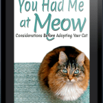 You Had Me at Meow; Considerations before Adopting Your Cat