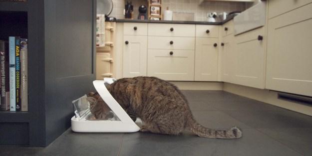 Cat Feeder SureFeed Microchip Pet Feeder by SureFlap Promotional Code FLOPPYCAT15