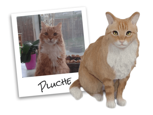 Coupon Code for a Plush Cuddle Clone PlucheComparison