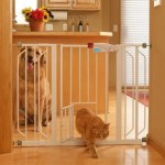 How to Keep Your Dog Out of the Litter Box Ideas