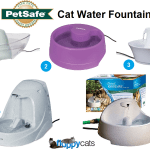 Pet Hydration Month: PetSafe® Brand's Cat Water Fountains
