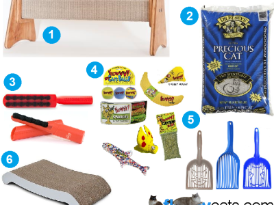 Trigg's 7th Birthday Favorite Cat Products Giveaway!