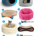 8 Great Cat Beds We Have Reviewed