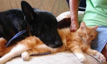 Tucker and Jack