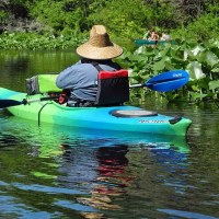 Paddlers on the Wekiva River