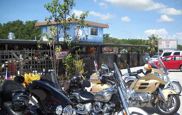 Florida 39 s best seafood restaurants no frills fish shacks for Jack s fish house