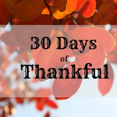 30 Days of Thankful: Days 6 & 7