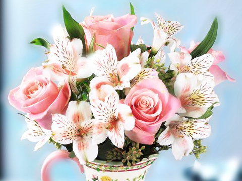 Flowers Florist Flowers Delivery