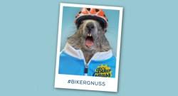 Biker-Gnuss2
