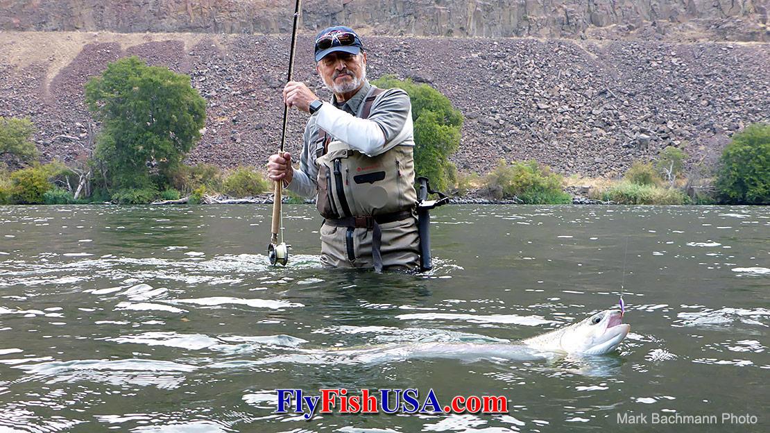 Deschutes River Fly Fishing Guide Trips The Fly Fishing Shop