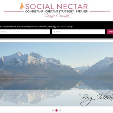 Connie Cermak Launches A Beautiful WordPress Website