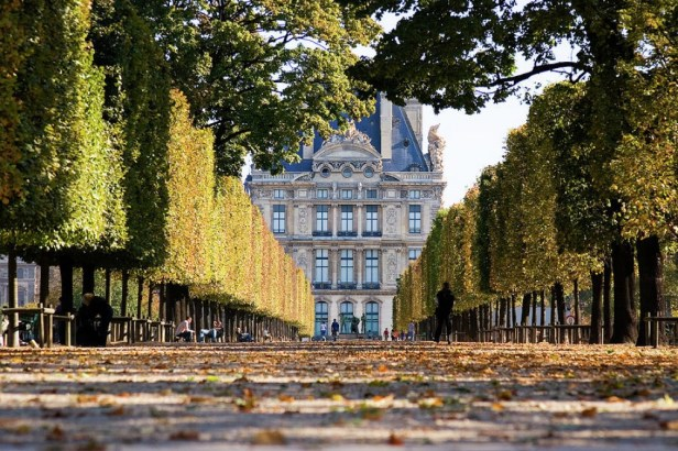 9088710-R3L8T8D-1000-paris-louvre-from-tuileries-gardens-in-fall-mathew-lodge