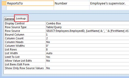 Microsoft Access Table Field Lookup Properties documentation report