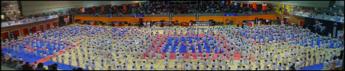 Open Taekwondo