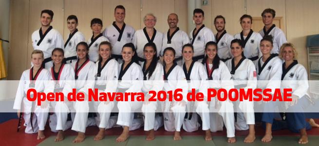 navarra_desc