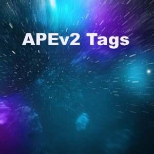 Delphi XE5 Firemonkey APEv2 Tags