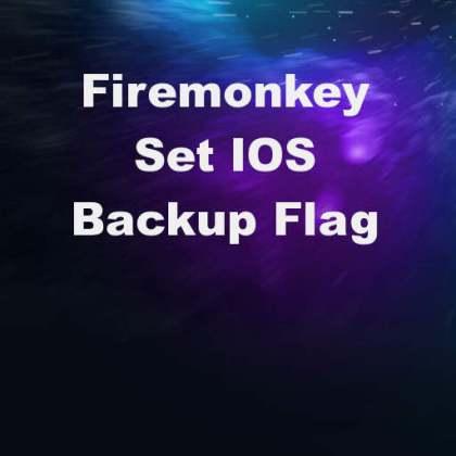 Delphi XE8 Firemonkey Icloud Backup Flag Apple IOS