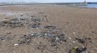 Pourquoi nettoyer les plages? Le ramassage des déchets d'origine humaine va permettre de préserver et protéger la plage ainsi que la laisse de mer. Les marées et les vagues ramènent […]