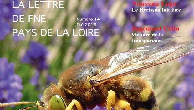 FNE Pays de la Loire vient de publier sa revue trimestrielle. Retrouvez notre actualité, nos actions ainsi que notre dossier sur les 40 ans de la loi de protection de […]