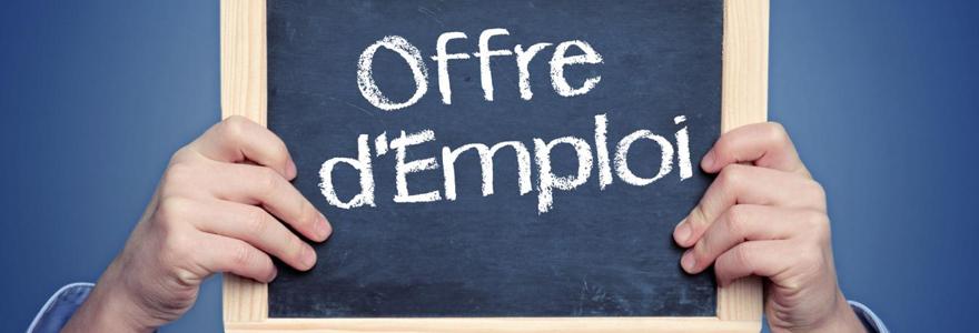 offre d emploi e fonction du cv