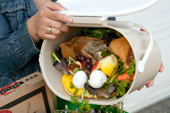 Food wastage is wrecking our environment, let's think before we throw