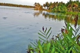NGT notices to Centre, Delhi over waterbodies