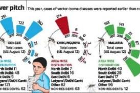 City feels the sting as dengue, chikungunya cases cross 600