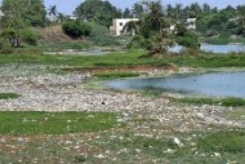 HC intervention sought to protect 39,000 waterbodies in State