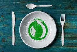 Bioplastics not an eco-friendly alternative to plastic: study, than what would be the next step?