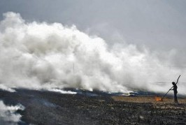 Enforcing a ban will not end the menace of stubble burning, say researchers