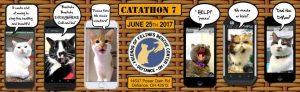 Catathon 2017