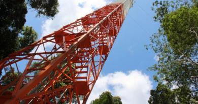 A Torre Alta ultrapassa a altura da Torre Eiffel em um metro. Infográfico: Fapeam