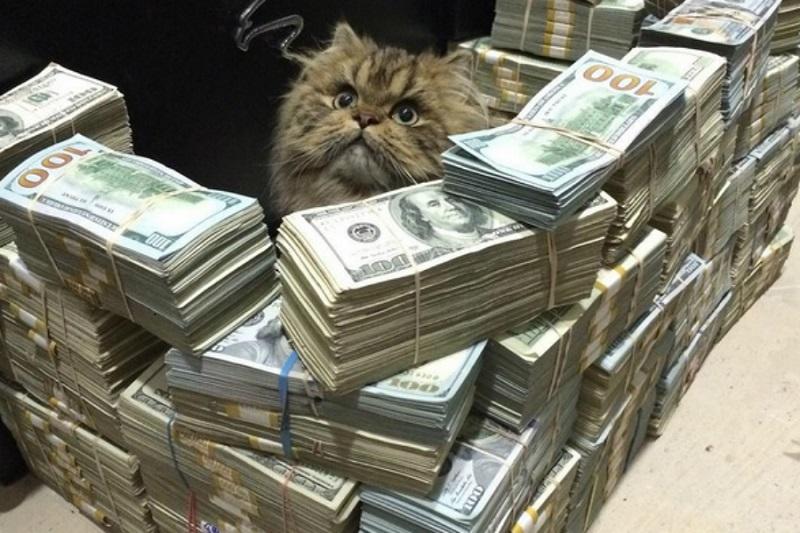 Apesar de afirmar que sua riqueza vem do pôquer, reportagens dão conta de que seu dinheiro vem da fortuna de seu pai. (Reprodução/Instagram)