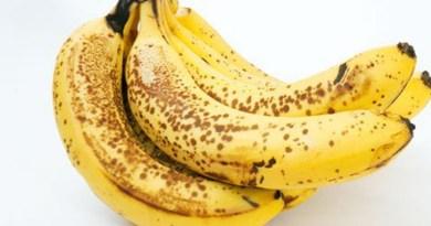 destaque-352152-banana-nanica