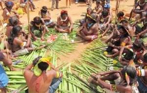 Aldeia Indigena
