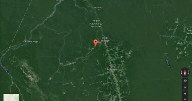 Criada em fevereiro de 2006 pelo Decreto Presidencial nº 10.770, a Flona do Jamanxim está localizada a noroeste da BR-163, na divisa entre os estados do Pará e Mato Grosso. Tem um perímetro de 1.301.120 hectares.