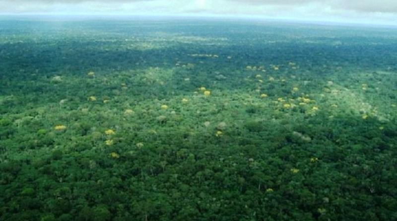 ambiental