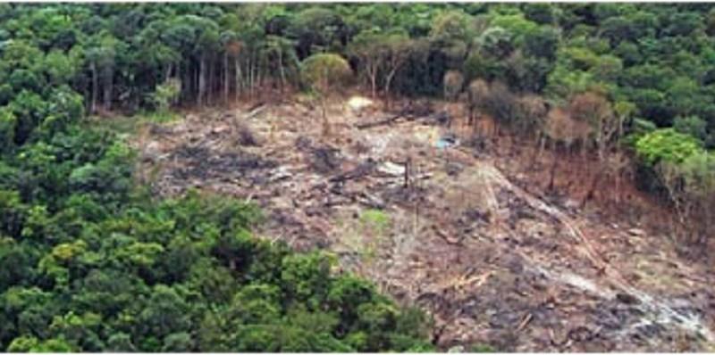 Operação-Rios-Voadores-combate-grilagem-de-terras