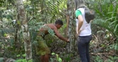 Casca-de-uma-planta-é-extraída-na-floresta-Amazônica