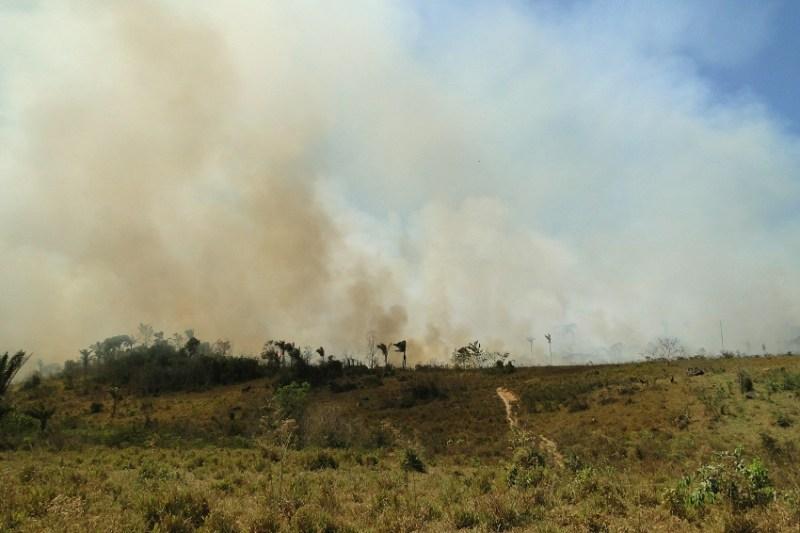 Imagem Fogos de incêndio em Novo Progresso (foto Jailson Rosa)
