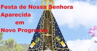 nsaparecida_vinheta1-600x419