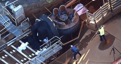 Serviço de emergência foi acionado no parque Dreamworld, em Coomera, no leste da Austrália, após acidente deixar quatro mortos na terça-feira (25) (Foto: Dan Peled/AAP via AP)