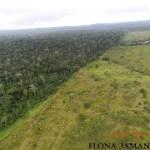 MP que amplia área de conservação ambiental no Pará gera apreensão